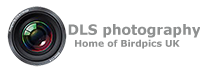 DLS Photography & Birdpics UK Logo